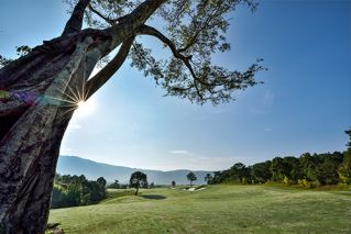 7 Day Dalat And Nha Trang Golf Hideaway